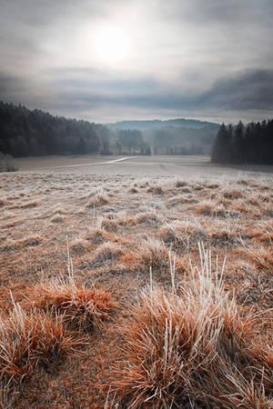 Snowless Winter by VBmonkey26