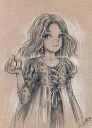 sketch24