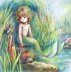 mermaid and swamp bittern
