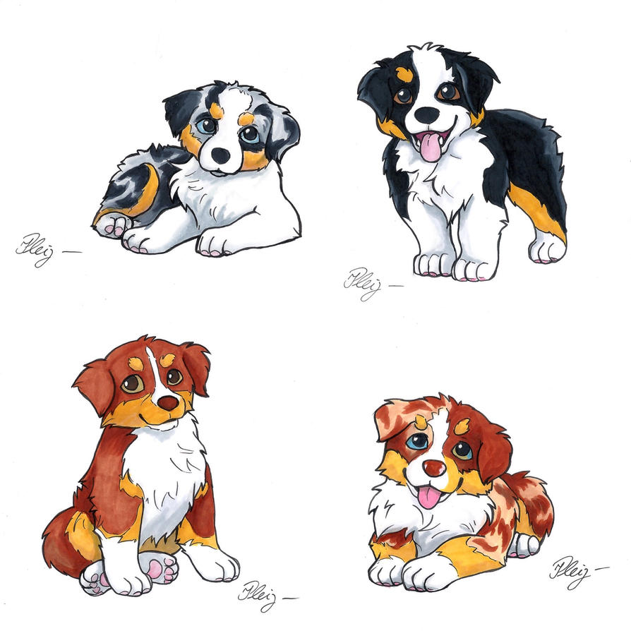 Aussie puppy drawings by SculptedPups