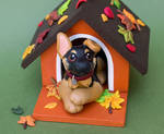 German Shepherd puppy in a dog house