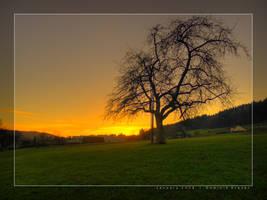 SG Sunset by dkraner