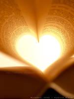 book heart 02 by dkraner