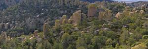 Chiricahua Ridge by halley
