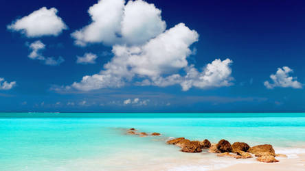 Beach Waterscape HD