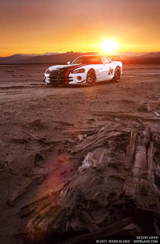 Desert Viper by notbland