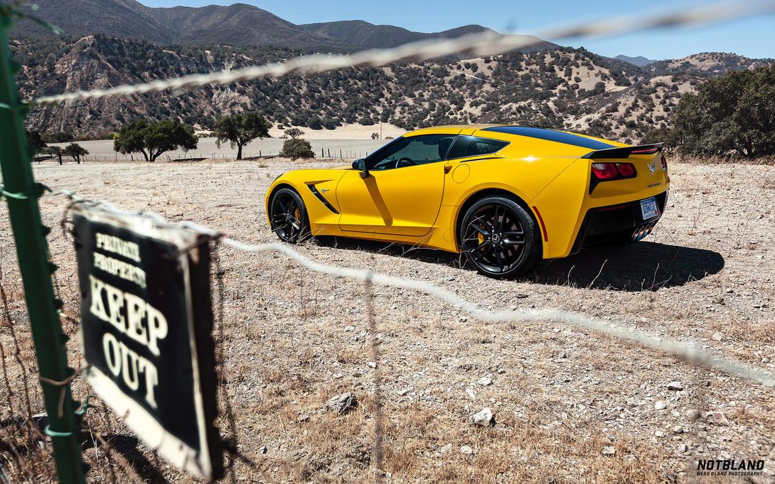 Corvette Stingray 4 by notbland