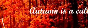Autumn (2) by jillcb
