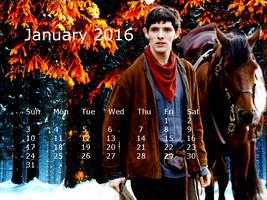 January 2016 (2) by jillcb