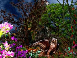 Heavens Garden by jillcb