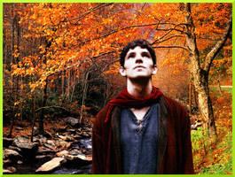 In Portrait Merlin by jillcb