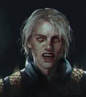 Oh, Grey Warden by perditionxroad