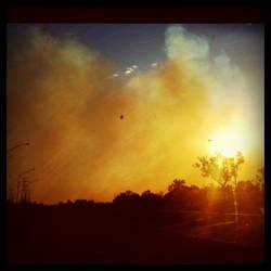 Bushfire by xMidna