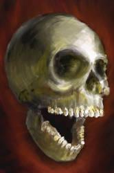 Skull Study by semperfried76