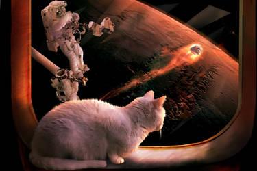 Katze-Anflug-Mars by Stille-Wasser