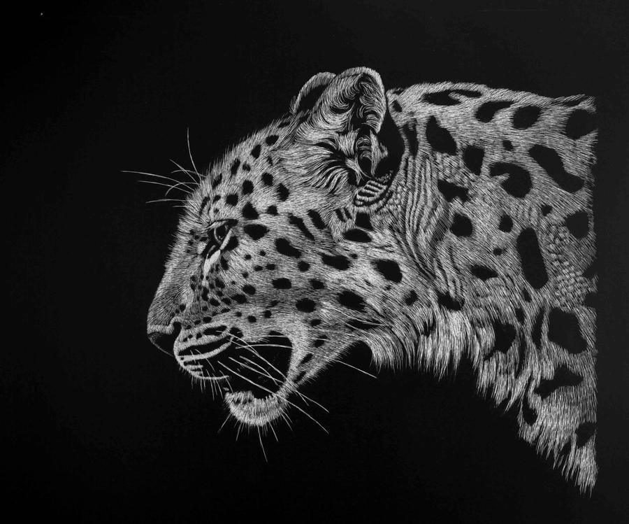 Leopard study by Lara-Shychoski