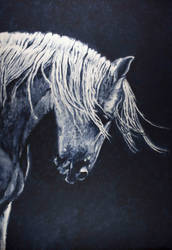 Study of a horse in paynes gray