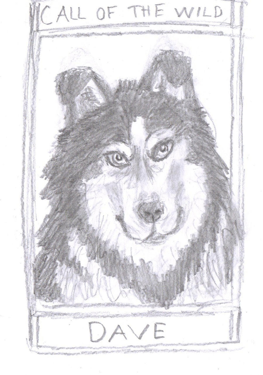 a character sketch of buck from call of the wild by jack london My personal response to the call of the wild by jack london essay examples   call of the wild: character sketch - buck throughout the novel the call of the .