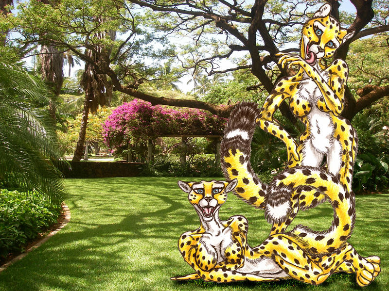 Cheetah Femme Practice w-BCG by UndeniableGuile