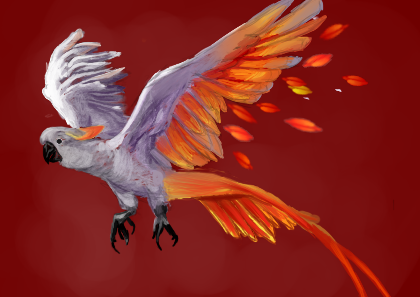Cuckatoo Phoenix Hybrid by ChuuDev
