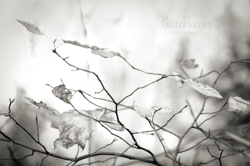 Awaiting Winter by Bittersuesz