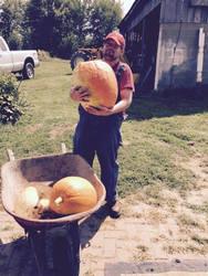 pumpkin harvest 2017 by kaijulord21