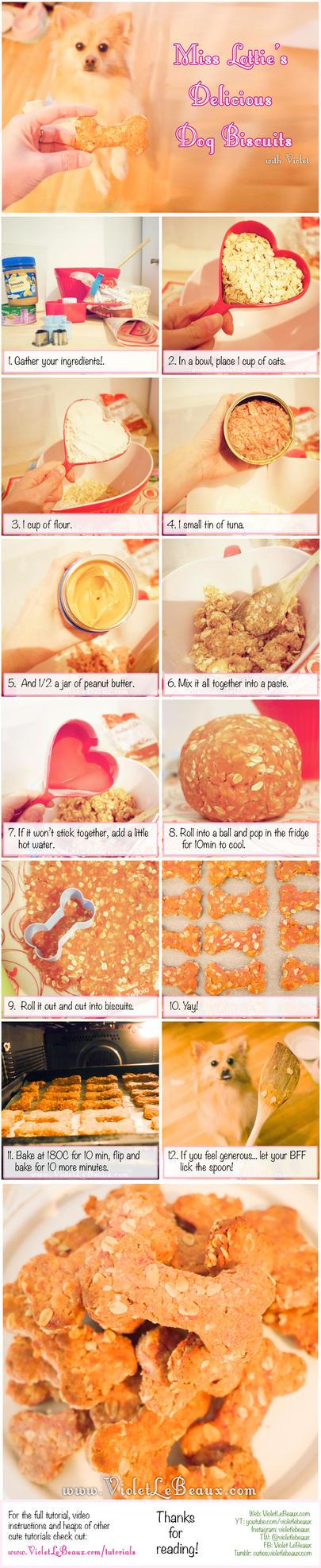Lottie's Yummy Dog Cookie Treat Recipe by VioletLeBeaux