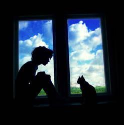 window by lafaette