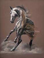 Northen wind by Julyart