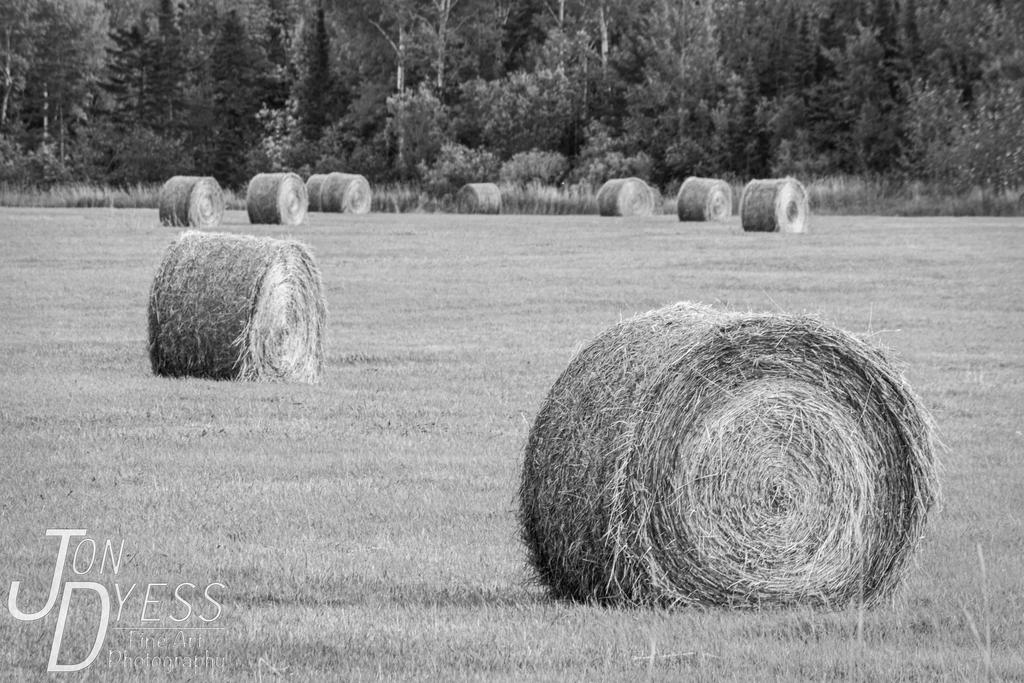 Wisconsin Hay Bails by hull612