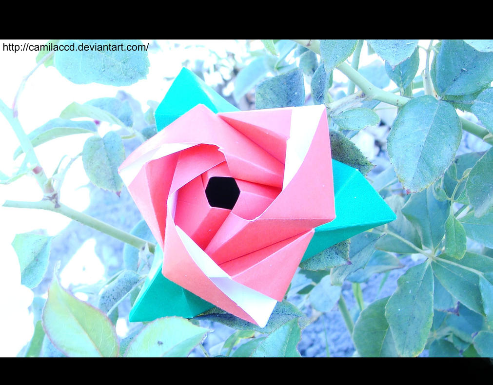 Origami flower cube 2 by camilaccd on deviantart origami flower cube 2 by camilaccd mightylinksfo