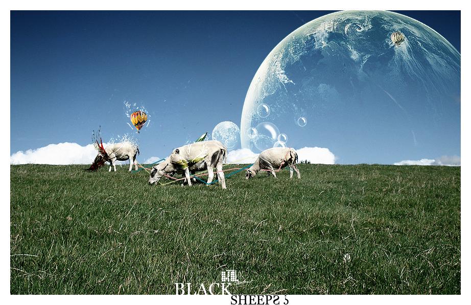 Black Sheeps? by kybel