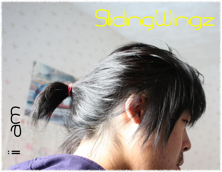 SlidingWingz's Profile Picture