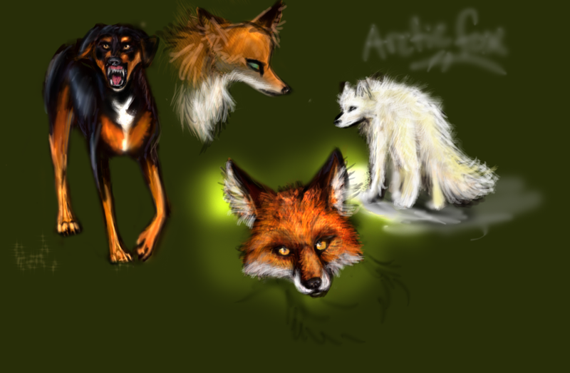 random canine doodles by Kinky-Slingy