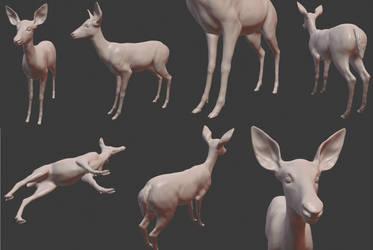 Deer model final