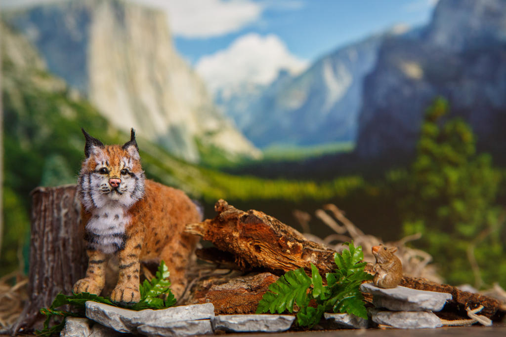 Dollhouse Miniature 1:12 Lynx Bob Cat OOAK by heartfeltcanines