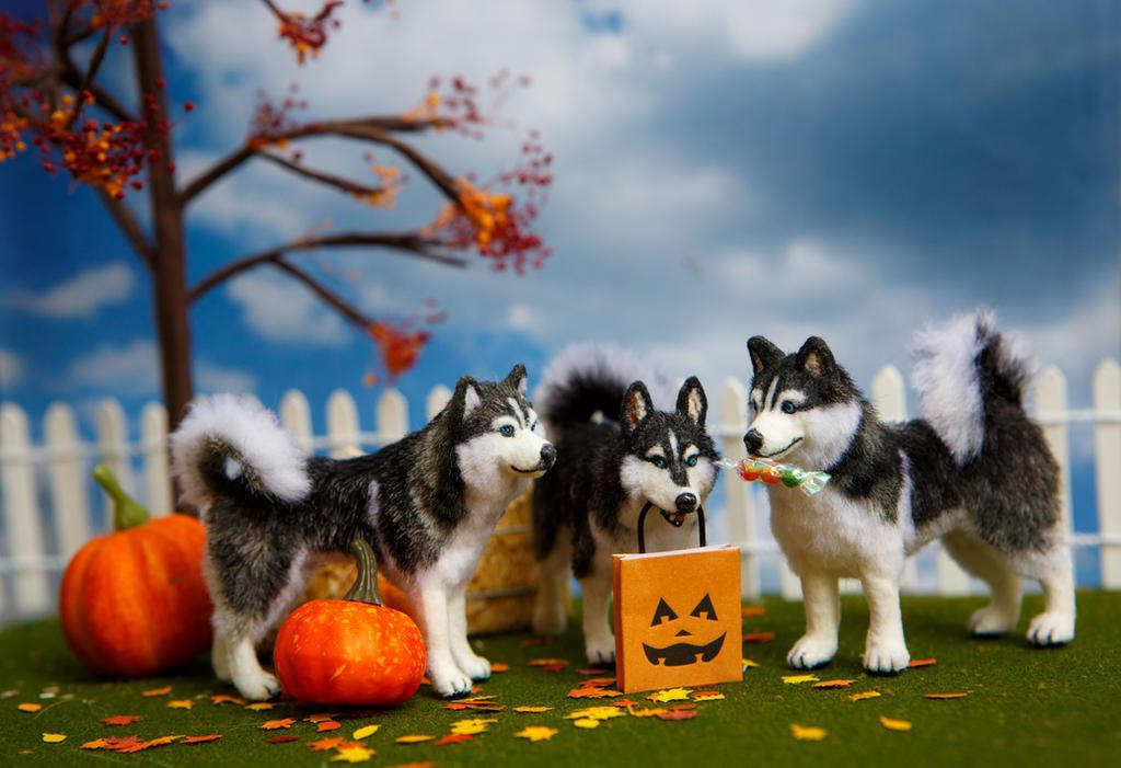 dollhouse miniature 112 ooak halloween huskies by heartfeltcanines