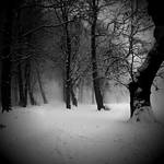 my winter song