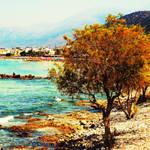 On Cretan shores