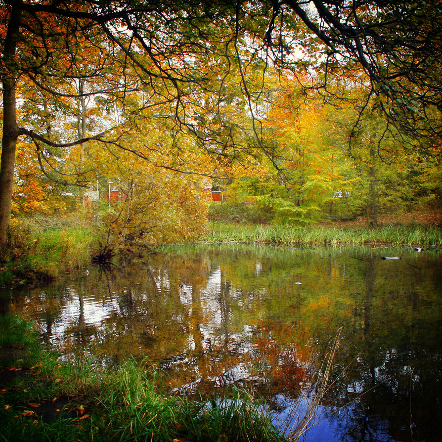 autumn waters by RickHaigh