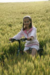Biking through crops
