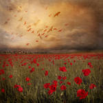 Landscape with red birds