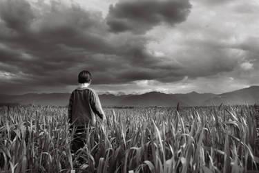 freedom by Floriandra