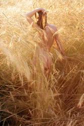Golden light 1 by Floriandra