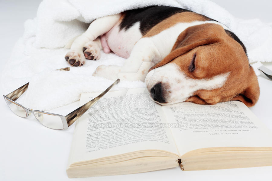 Boring book by Floriandra