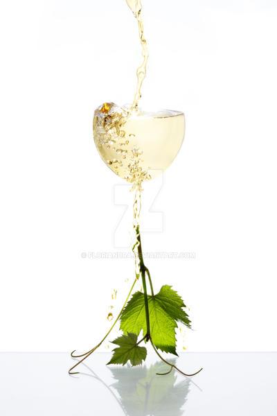 White wine by Floriandra