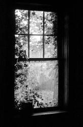 insideout by sl8t3r
