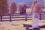 Jones Farm In IR by Earthymoon