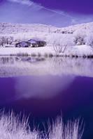 In My Snowy Blue Dreams by Earthymoon