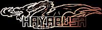 Hayabusa Text Piece by FriedRyce